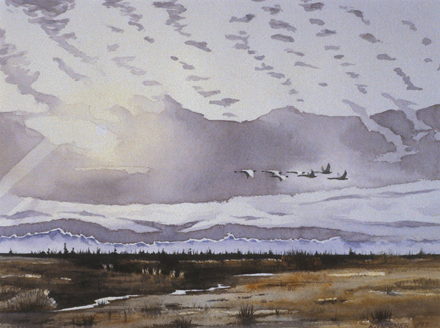 Delta swans