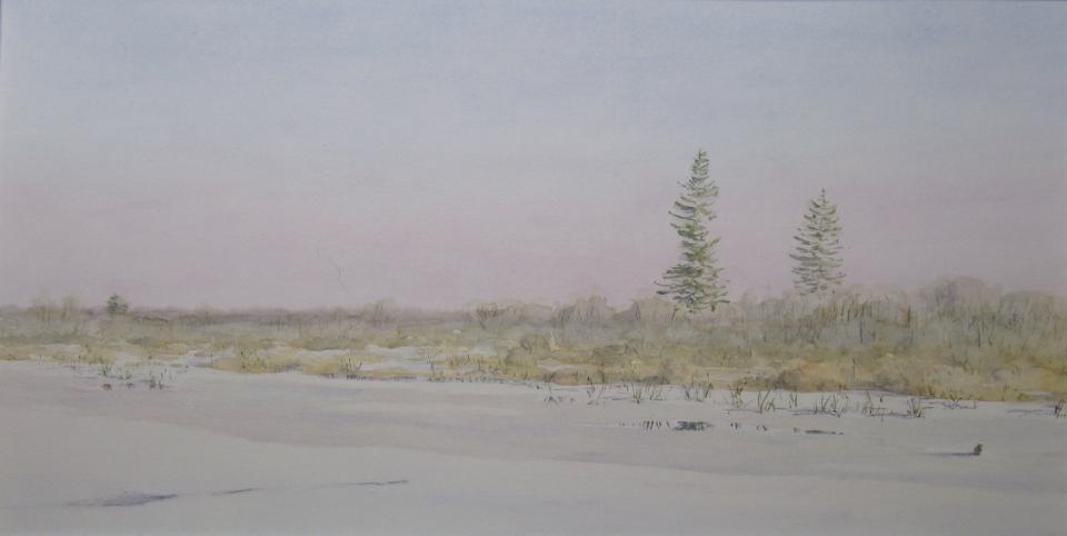 Muskrat pond